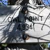 Owl Point