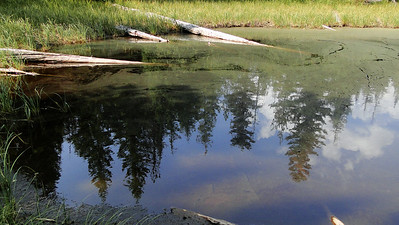 Perry Lake.