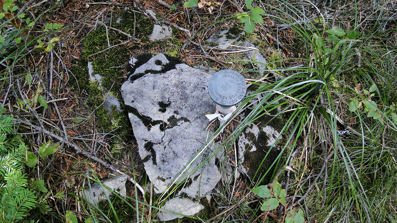 Geological marker in the woods on the way to Perry Lake.