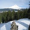 Tri County Ridge Summit. <FONT SIZE=1>© Chiyoko Meacham</FONT>
