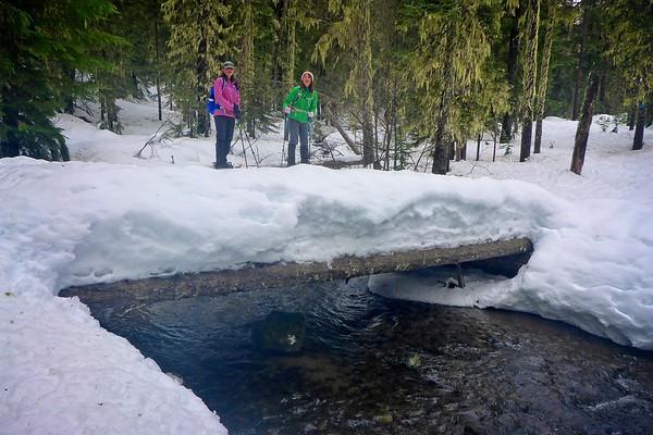 Pocket Creek Walkabout