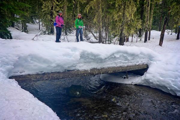Pocket Creek Loop