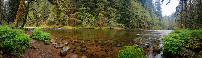 Along the Salmon River!