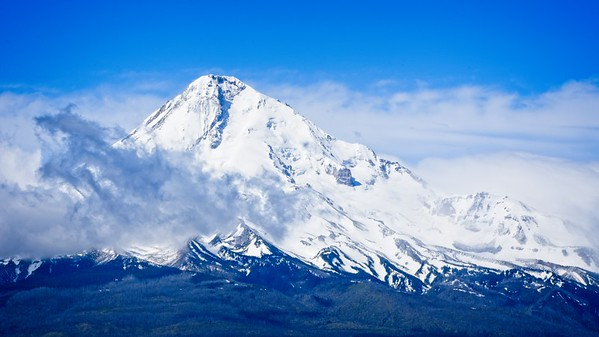 Surveyors Ridge - Yellow Jacket VP
