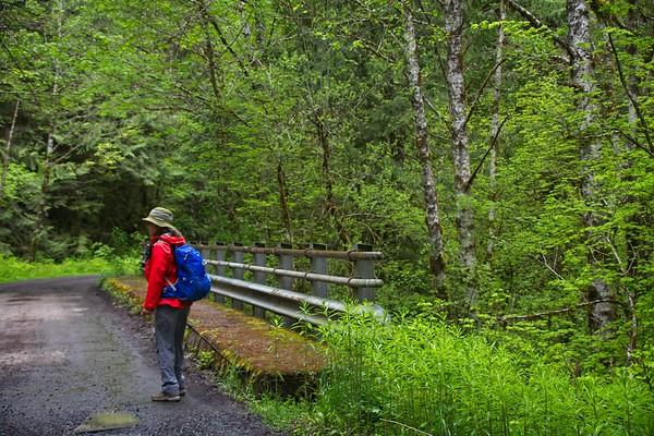 Still Creek Loop - Still Creek Rd.