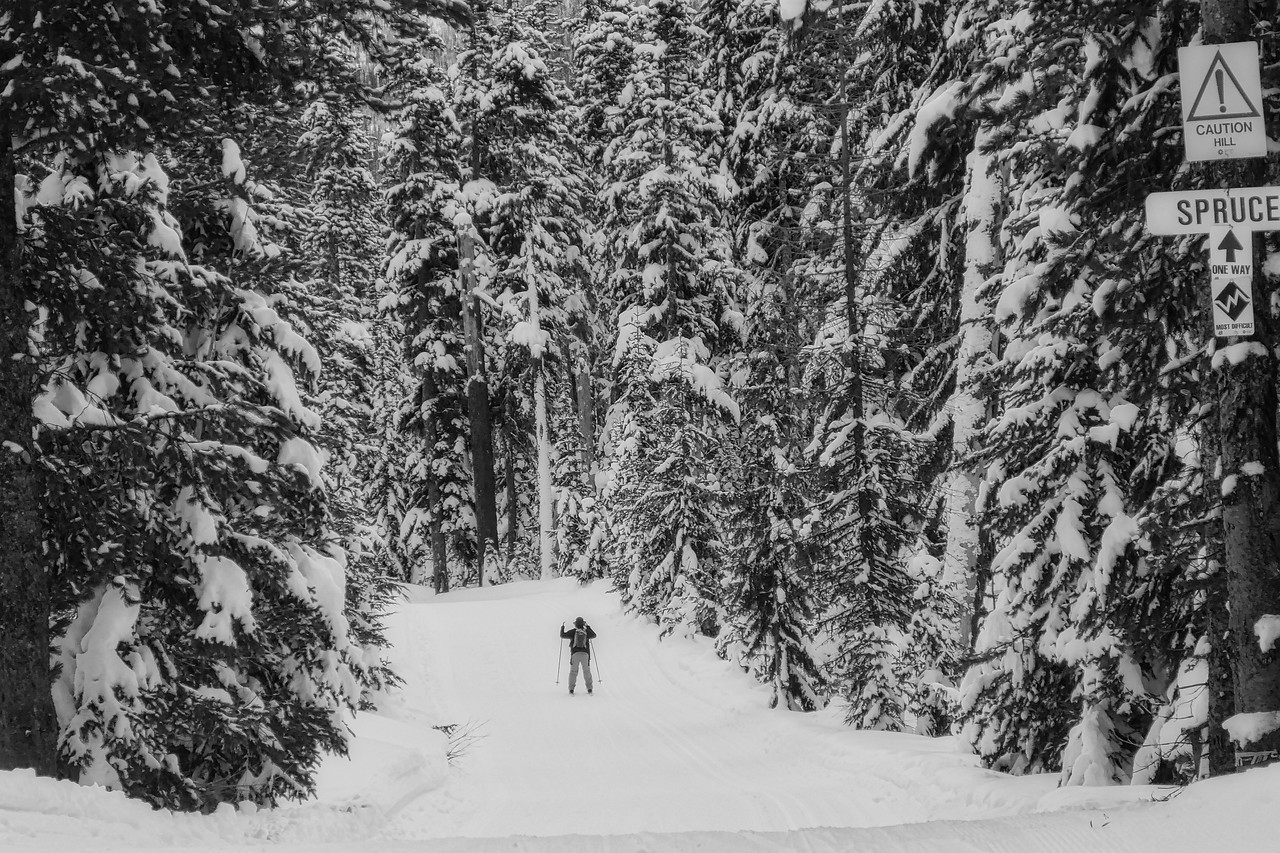 """Teacup again, Guy tackles the """"black"""" Spruce trail for the first time!"""