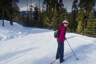 Teacup Cross Country Ski - 2018/01/28