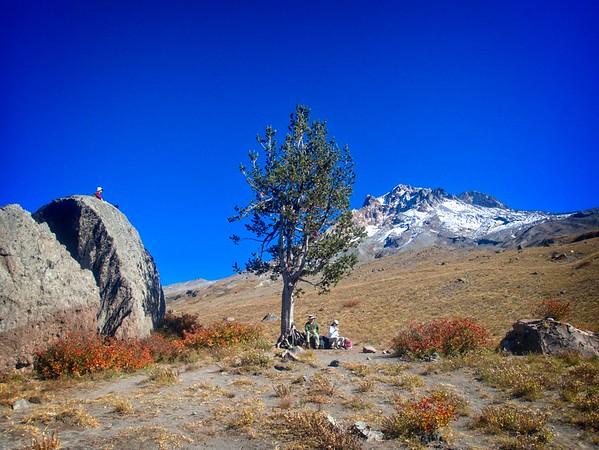 Timberline to Paradise Park & back © Chiyoko Meacham