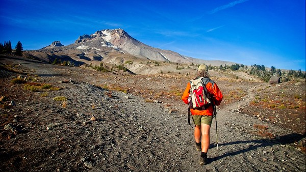 Timberline - East side climbers trail.  © Chiyoko Meacham