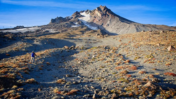Timberline - East side Climbers Trail