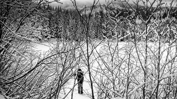 Tom Dick & Harry Mt © Chiyoko Meacham