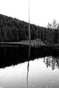 Trillium Lake Loop