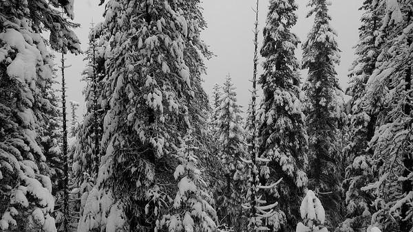 Upper Twin Lake hike