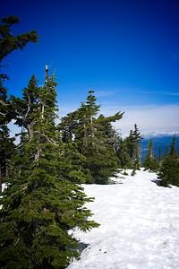 Vista Ridge to Dollar Lake