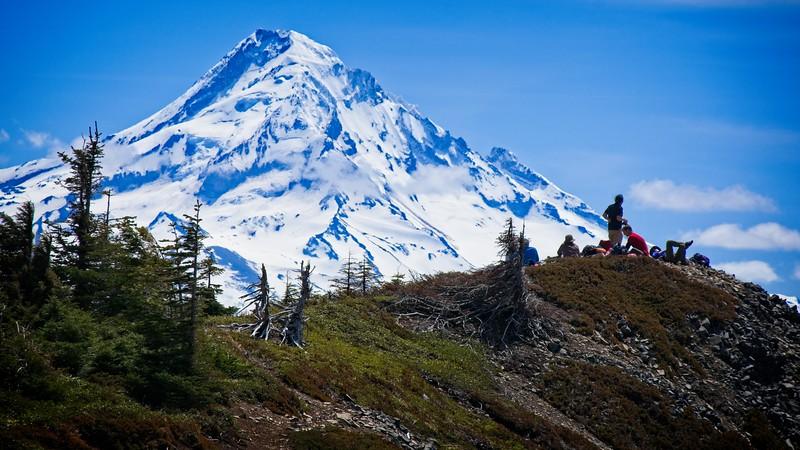 On Tomlike Mt.
