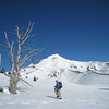 Climbing up to Timberline. <FONT SIZE=1>© Chiyoko Meacham</FONT>