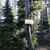 From the Mt. Thielsen trail head the first junction you come to is the Spruce ridge trail.