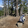 The PCT, Mt Thielsen trail junction.