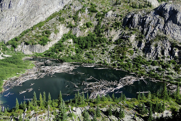 Grizzly Lake.