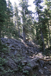 Olallie Butte - July 2010