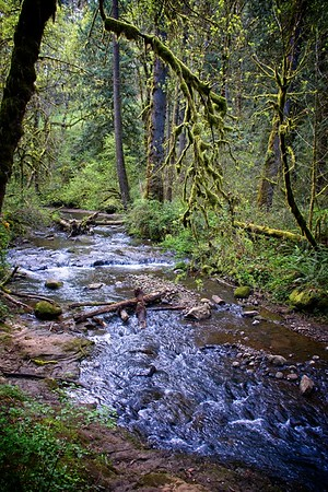 Cazadero Trail - Deep Creek