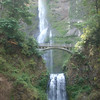 Multnomah Falls <FONT SIZE=1>© Tim Freeman</FONT>