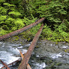 Collawash River <br /> Hot Springs Fork