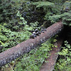 Balanced Rocks on the Collawash River <br /> Hot Springs Fork
