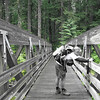 First Trail Bridge over Nohorn Creek <FONT SIZE=1>© Chiyoko Meacham</FONT>