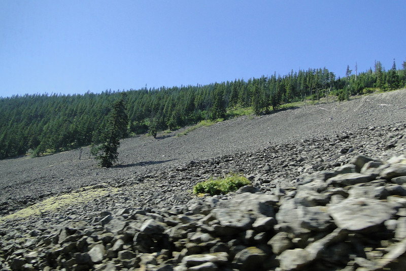 This large Talus slope is on Forest Road 10 shortly after entering the Bull Run from the Lolo Pass side. Apparently all the rock work around Multnomah Falls & other Gorge trails was built with rock from this Talus slope.