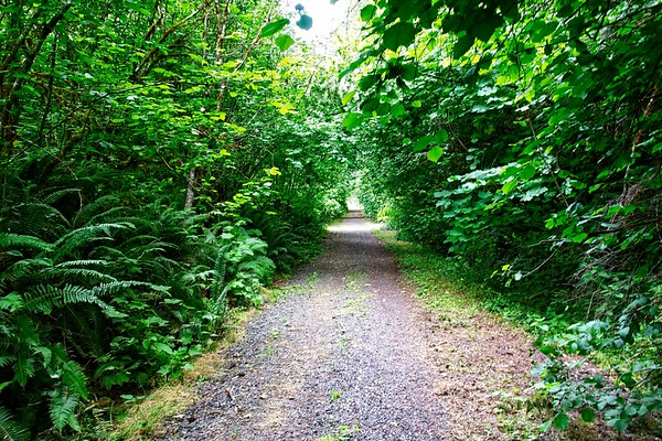 Cazadero Trail