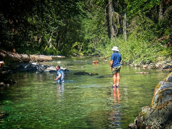 Elk Lake Creek © Chiyoko Meacham