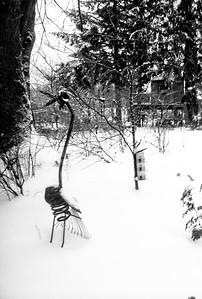 February snowpocalypse 2021 © Chiyoko Meacham