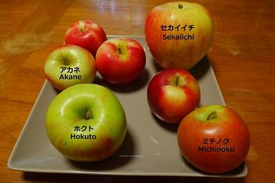 Kiokawa Orchard - 2016/10/02