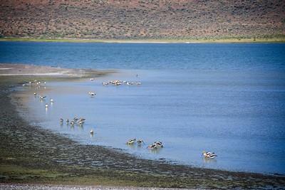 Lake Abert