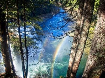 Lewis River Trail © Chiyoko Meacham