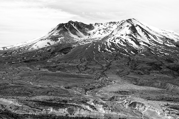Mt St Helens - Johnston Ridge and Humocks loop.