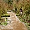 The trail to Munson Falls!