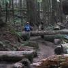 North Neahkahnie Mountain Trail <FONT SIZE=1>© Chiyoko Meacham</FONT>