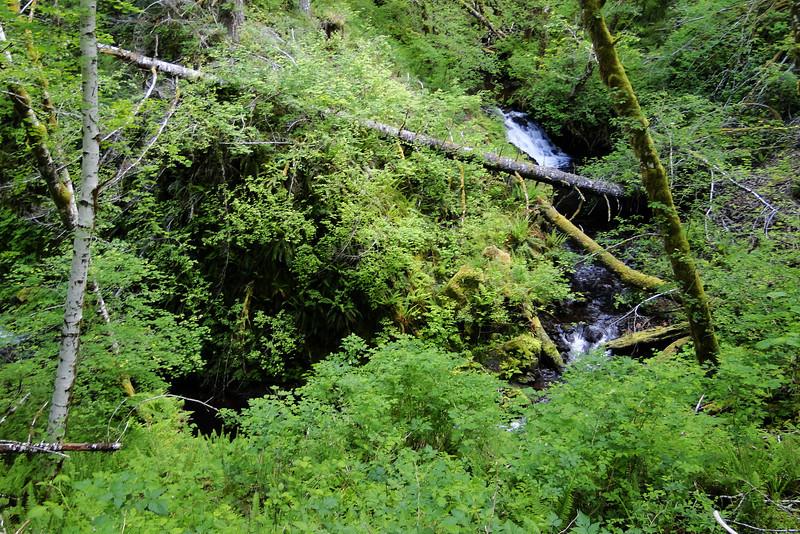 Pennoyer Creek