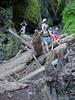 Oneonta Gorge - A bit wet