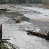 Sandy River<br /> Oxbow Park.