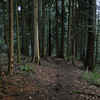 Equestrian trail down to Elk Meadows.<br /> Oxbow Park.