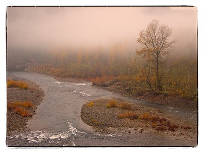 Early Morning in Oxbow Park