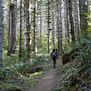 Niagra Falls Trail