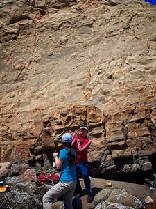 Sitka Sedge to Cape Kiwanda - 2021/07/04