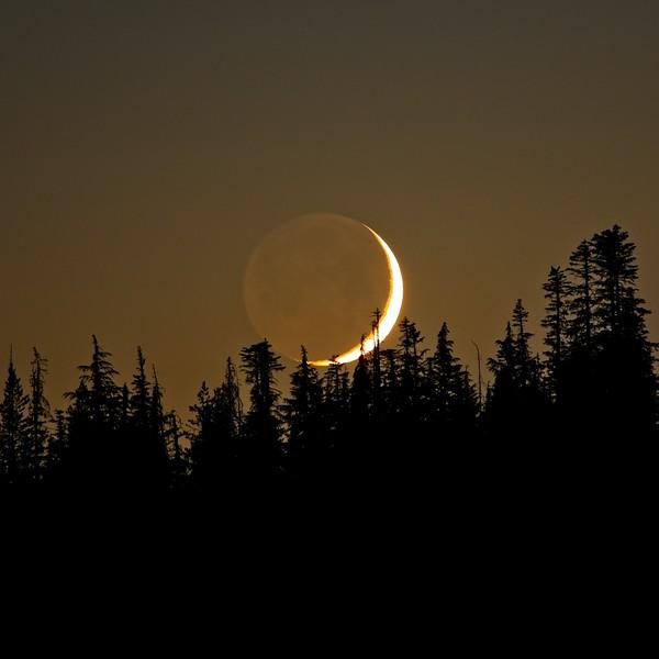Moonset over McKenzie Pass