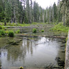 Clearwater Creek