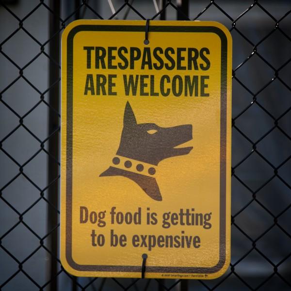 Expensive Dog Food