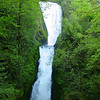 "<B>Bridal Veil Creek - <A HREF=""http://guy.smugmug.com/keyword/Bridal Veil"">Bridal Veil Falls</A></B> Just down the road from Latourell Falls you will find Bridal Veil Falls but you will have to get out the car & walk half a mile :^).. <FONT SIZE=1><A HREF=""http://www.waterfallsnorthwest.com/nws/waterfall.php?st=OR&num=1915"" TARGET=""_blank"">Northwest Waterfall Survey</A></FONT>"